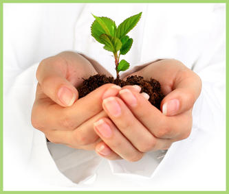 Picture of a woman's hands cradling a young seedling in earth.
